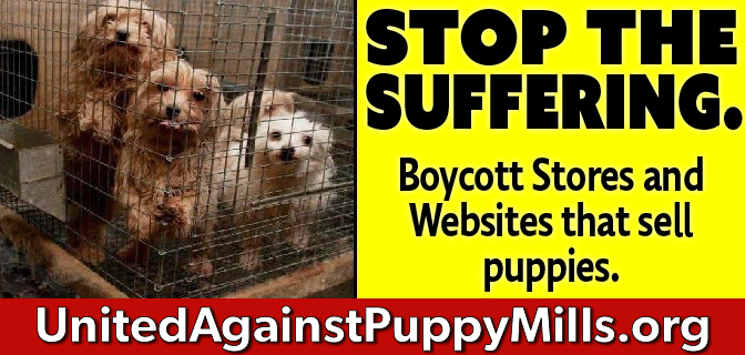 Home - United Against Puppy Mills